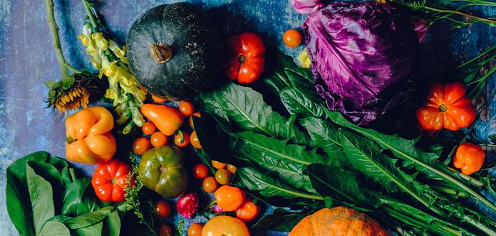 Eine Aufgabe der Gartenarbeit im Sommer ist das Ernten von Obst und Gemüse
